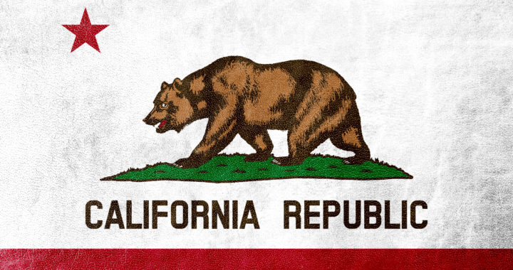 California State Flag painted on leather texture